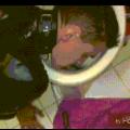 Du wirst mein WC sauber lecken Angebote BDSM und Fetisch